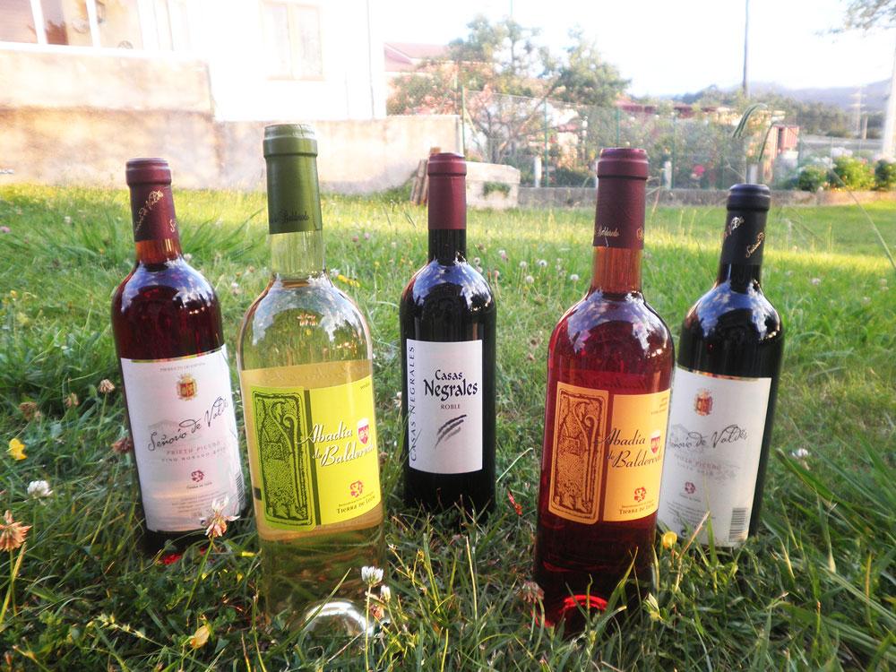 vinos valdevimbre